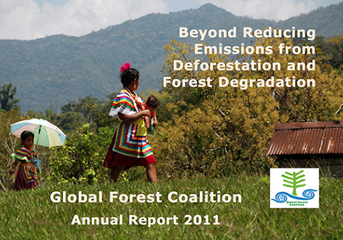 GFC 2011 Annual Report