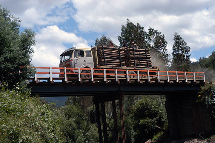 *23 Chile-Z_LANGELLE_logtruck